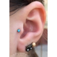 tragus-party